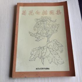 菊花白描图集/中国传统工艺美术资料丛书