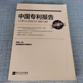 中国专利报告(总第1卷 2013)
