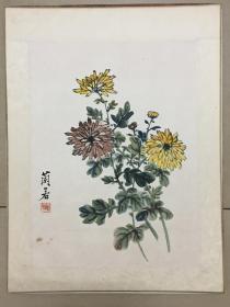 广东名家-王兰若-原装裱《菊花》