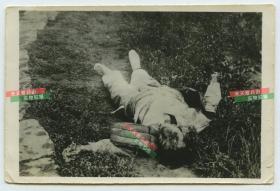 民国1930年代淞沪事变时期的倒毙死亡在地上的中国百姓尸体老照片,尺寸为9.6X7.1厘米。