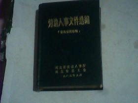 劳动人事文件选编(保险福利续编) 精装
