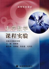 大学数学课程实验 李辉来 主编 9787040225952