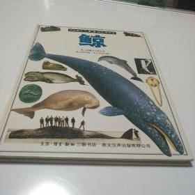 目击者丛书 自然博物馆     鲸   (英)   克鲁顿布罗克著        【186】层