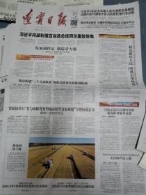 辽宁日报4份