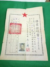 1952年上海市私立致用补习学校修业证明书