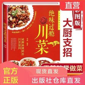 绝味过瘾川菜菜谱大全家常菜川菜美食书籍做菜的书食谱大全书正版