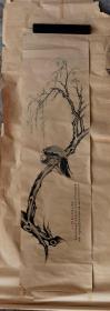 花鸟,软片,民国时期