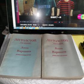 安娜卡列尼娜 俄文 共二卷