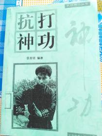 武林神功丛书-抗打神功