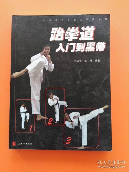 公共体育专业化运动丛书:跆拳道入门到黑带
