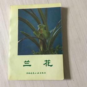 兰花(内有多幅沈渊如所养的兰花照片,中国建筑工业版)1版3印 95品