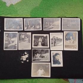 老照片12张合售!