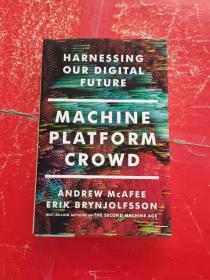 Machine, Platform, Crowd:Harnessing Our Digital Future