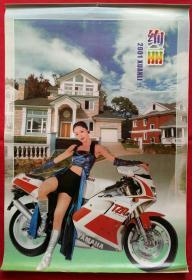 原版挂历2001年绚丽13全 摩托美女