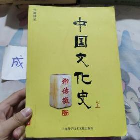 中国文化史(上中下)