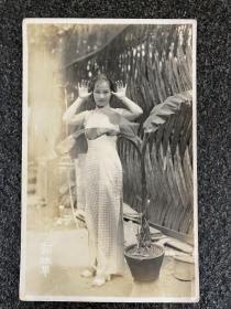 民国明星老照片:明星《貂班华》旗袍装、尺寸8.5/13.5Cm、品相如图所示!少见。