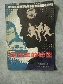 足球王的秘密:科学幻想小说