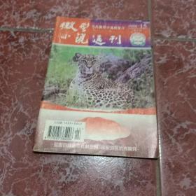 微型小说选刊1998年第15期