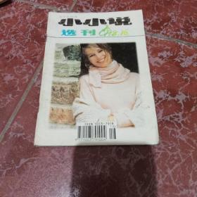 小小说选刊1998年第16期