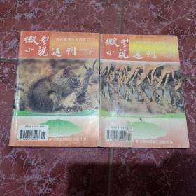 微型小说选刊1997年第17.21期