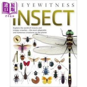 昆虫 英文原版 DK Eyewitness: Insect-