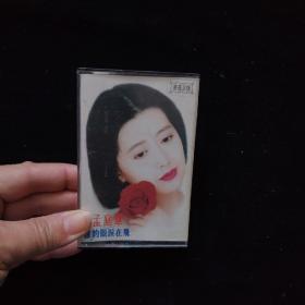 磁带: 孟庭苇-谁的眼泪在飞【附歌词】