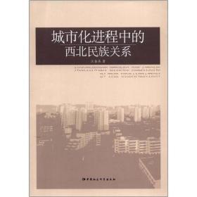 城市化进程中的西北民族关系