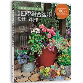 图解四季组合盆栽设计与制作