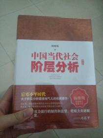 中国当代社会阶层分析-精装全本