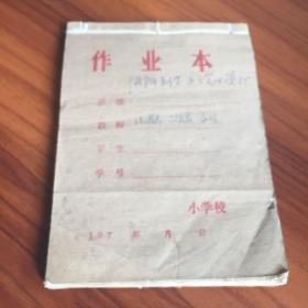 中医笔记 手抄本