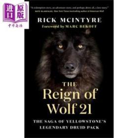 狼21的统治 英文原版 The Reign of Wolf 21 Rick McIntyre-