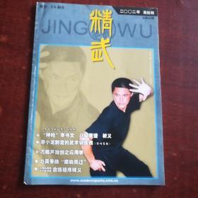 精武杂志。2002年10期