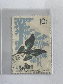 """特56《蝴蝶》信销散邮票20-12""""丫纹樟凤蝶"""""""