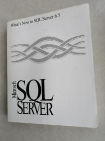 What,s New in SQL Server6.5 Microsoft  SQL SERVER