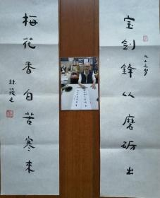 著名书画家~林筱之~精品书法小对联(保真)附照片