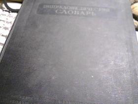 俄文百科全书词典(第二;三卷)【俄文版】