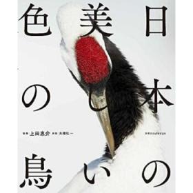 日本美丽颜色鸟类图鉴 日文原版 日本の美しい色の鸟 上田恵介 X-Knowledge-