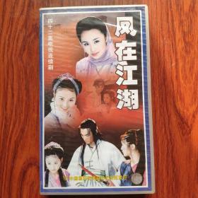 42集电视连续剧,凤在江湖,VCD,全新未开封