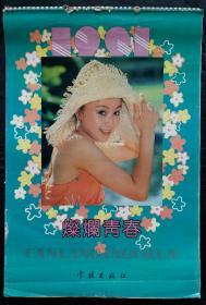 上世纪挂历画1991年灿烂青春 全13张 (美女明星)