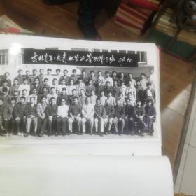 80年代吉林省林业局资料照片88张