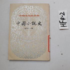 中国文化史丛书 中国小说史 上 竖版繁体