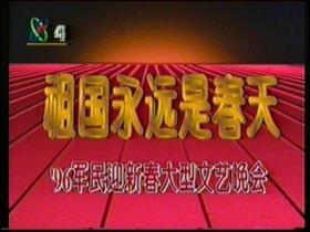 录像带 96双拥晚会80分钟左右 96春节晚会60分钟左右 家庭录像10分钟左右