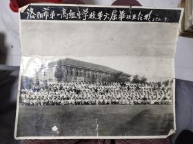 洛阳市第一高级中学校第六届毕业生合影,黑白照片,1960年!超级大,长28.5公分宽24公分!