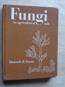 Fungi in agricultural soils