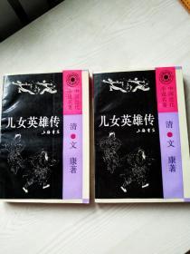 中国近代小说名著《儿女英雄传》上、下两册全1993年8月 一版一印 内容详见实拍图片目录 印5000册