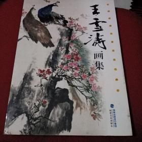 王雪涛画集