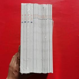 正版 睿丁英语;1、2、3、4、5、6、7、8、9、10、11、12、13、14、15、16(十六本合售)正版
