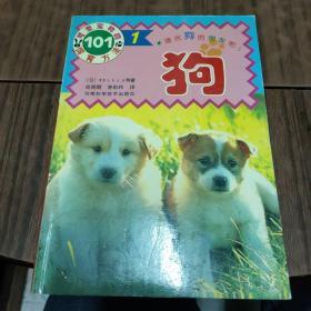 可爱宠物的饲育方法101——狗