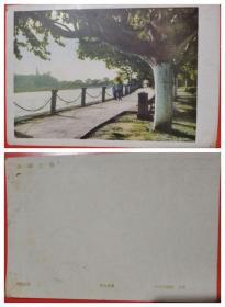 西湖湖滨公园