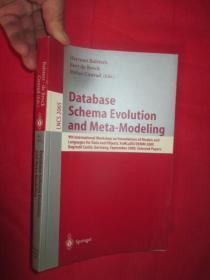 Database Schema Evolution and Meta-Modelin...      (小16开 )     【详见图】